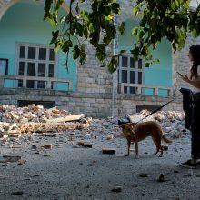 Albaniją supurtė galingas žemės drebėjimas