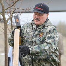 A. Lukašenka: jei europiečiai nori problemų dėl sankcijų, gaus