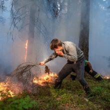 Per gaisrą pelkėje išdegė didžiulis plotas nendrių