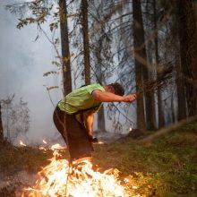 Į Šilainius lėkė ugniagesiai: miškelyje kilo gaisras