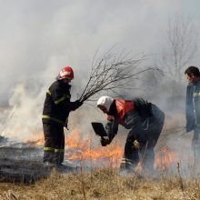 Dėl sausros – neeilinis posėdis Klaipėdos savivaldybėje