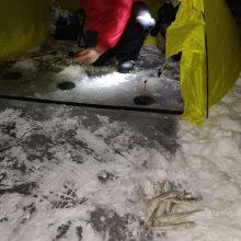 Žvejai pradėjo poledinės žūklės sezoną