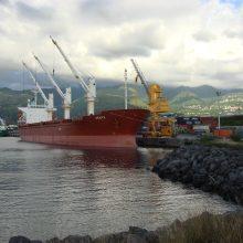 """Situacija: """"Venta"""" buvo didžiausias Lietuvos jūrų laivininkystės laivas, bet po kompanijos bankroto parduotas pigiai, kaip ir kiti laivai."""