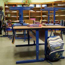40 mokyklų rengiasi išbandyti visos dienos modelį