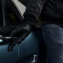 """Vagių grobis – nuo """"Prada"""" striukės iki automobilio žibintų"""