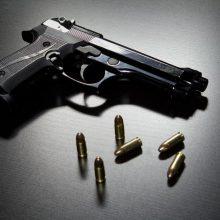 Vilniaus rajone rasti trys nelegaliai laikomi ginklai