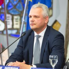 Darbo partija apie EP rinkimų rezultatus: geras startas Seimo rinkimams