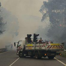 Ispanijos pietvakariuose plečiantis miško gaisrui evakuoti šimtai žmonių