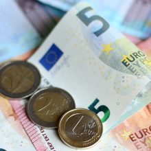 V. Šapoka atskleidė, kada paaiškės galutinis biudžeto projekto variantas
