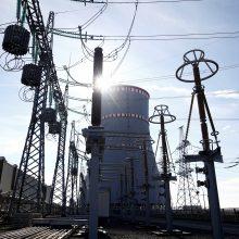 Prezidento patarėja: susitarimas dėl Astravo elektros netenkina