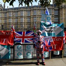 Didžioji Britanija iki rinkimų naujo ES komisaro kandidatūros nesiūlys