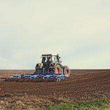Ūkininkai gali teikti paraiškas dėl paramos veiklos pradžiai