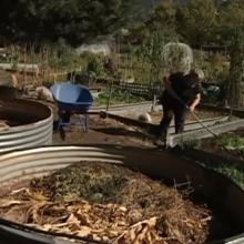 Vašingtone – galimybė paversti žmonių palaikus kompostu daržininkystei