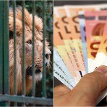 Kyšį siūliusiam zoologijos sodo darbuotojui – 9 tūkst. eurų bauda