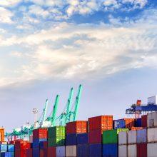Ekonomistas: mūsų eksportui gerai ir tada, kai pasaulinis vartojimas traukiasi, ir kai auga