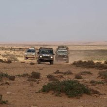 Senuoju Dakaro keliu – dėl labdaros