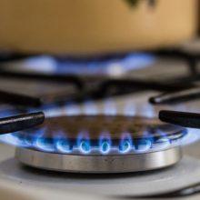 Vyriausybei teikiami projektai dėl elektros ir dujų kainų
