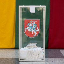 Vyriausybė pilietybės referendumui skyrė 230 tūkst. eurų