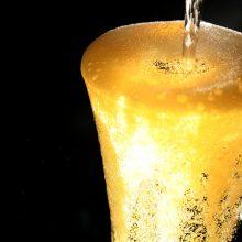 Mokslininkai: Austrijoje prieš 2,7 tūkst. metų valgytas mėlynasis sūris ir gertas alus