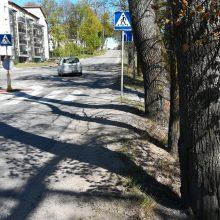 Gatvių rekonstrukcija Tauralaukyje: eismo ribojimai – ne iškart