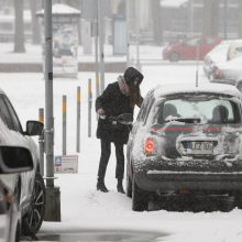 Žiemos iššūkiai klupdo ne tik kelių gaidelius