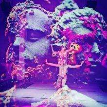 """Loftas Fest"" meno scenoje – Bjork muzika ir Baltijos baleto teatras"