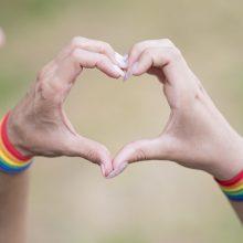 Įvertino Kauno sprendimą LGBT eitynėms nesuteikti leidimo: pasiekėme dugną