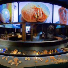 Naujas gintaro muziejus Nidoje duris lankytojams turėtų atverti liepą