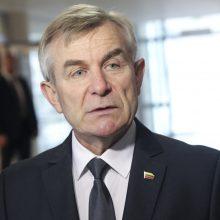 Lietuvos ir Gruzijos parlamentų vadovai aptarė galimybę pasirašyti memorandumą