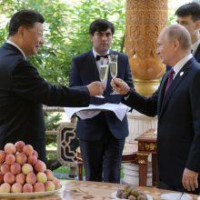 V. Putinas Kinijos lyderiui gimtadienio proga padovanojo ledų