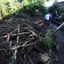 Salvadore nuslinkus purvo nuošliaužai žuvo šeši žmonės, dar 35 dingo