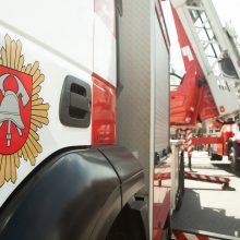 R. Tamašunienė: ugniagesiams nereikės rengti protesto akcijų