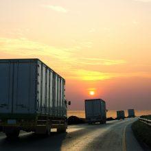 Lietuvos žvalgyba: kontroliuodama krovinių judėjimą Rusija siekia paveikti kaimynes