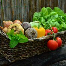 Patarimai, kad derlius ilgiau džiugintų