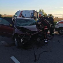 Vilniaus rajone susidūrus automobiliams žuvo moteris, sužeisti šeši žmonės