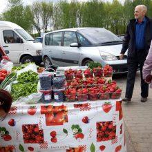 Paradoksas: turguje obuoliai dukart pigesni už bulves