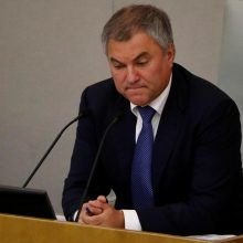 """Po protestų Rusijoje imtasi tirti """"užsienio kišimąsi"""""""