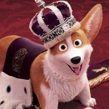 """Į kino teatrus atkeliauja juosta """"Karalienės korgis"""": įdomiausi faktai"""
