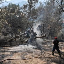 Graikiją apėmus smarkiausiai per kelis dešimtmečius kaitros bangai kovojama su gaisrais