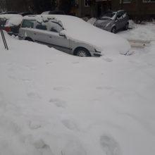 Kaunietis: gal žmonės pramogauja šiltuose kraštuose, kad jų automobiliai paskendę pusnyse?