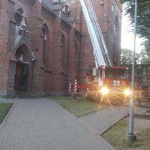 Palangos bažnyčią atakavo bitės