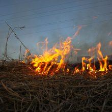 Lenkija: per pratybas Pamario Dravsko poligone kilo gaisras