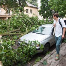 Ugniagesiai dėl stipraus vėjo 11 kartų vyko šalinti medžių