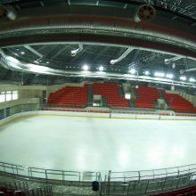 Surengtas specialus susirinkimas siekiant išsaugoti Elektrėnų ledo ritulį