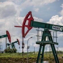 OPEC+ narės susitarė iki balandžio pabaigos tęsti naftos gavybos mažinimą
