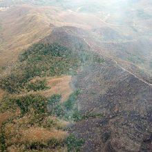Brazilijos prezidentas kovai su miškų gaisrais ketina pasitelkti kariuomenę