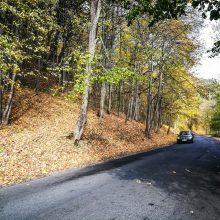 Kelininkai: magistraliniai keliai – sausi, rajoniniai – daug kur šlapi