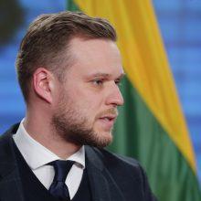 G. Landsbergis Seimo komitete: Kinijos politika verčia ieškoti naujų partnerių Azijos regione