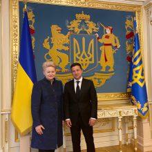 Dalia Grybauskaitė ir Volodymyras Zelenskis