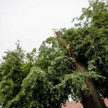 Dėl liūties ir audros elektros neturi apie 5 tūkst. vartotojų